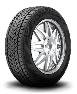 Wintergen (KR19) Tires